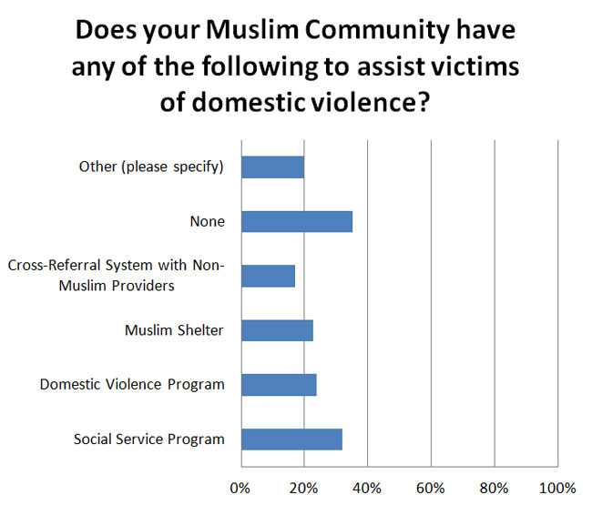 Does your Muslim Community have any of the following to assist victims of domestic violence?